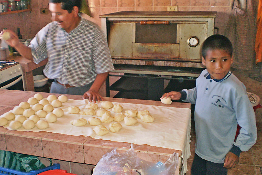 Sucre-(ayuda-tareas-domesticas)